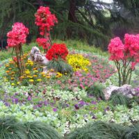 杭州植物园工程
